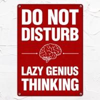 Табличка интерьерная металлическая Do not disturb Lazy genius thinking