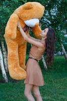 Мишка Тедди 160 см Кремовый