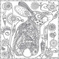 Обои раскраска Кролик 60х60