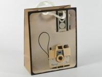 Подарочный пакет Фотокамера 32 см