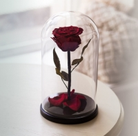 Роза в Колбе Багровый Гранат 7 карат