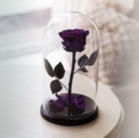 Роза в Колбе Фиолетовый Аметист 7 карат