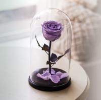 Роза в Колбе Сиреневый Жемчуг 7 карат