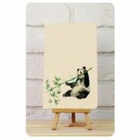 Тетрадь Панда мысли о бамбуке 1