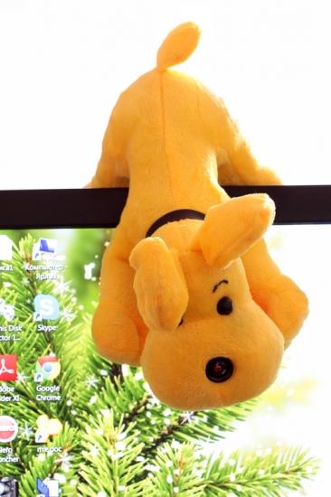Фото - Собачка с web - камерой купить в киеве на подарок, цена, отзывы