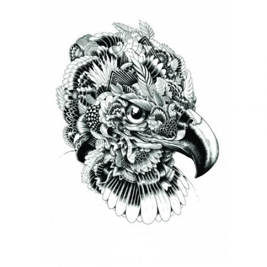 Фото - Скетчбук Орел купить в киеве на подарок, цена, отзывы
