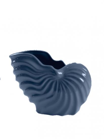 Фото - Декор глянцевый Морская раковина купить в киеве на подарок, цена, отзывы
