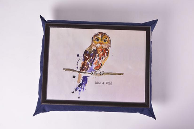 Фото - Поднос на подушке Сова купить в киеве на подарок, цена, отзывы