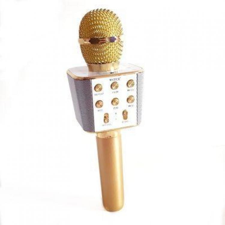 Фото - Караоке Микрофон WS-1688 Golg купить в киеве на подарок, цена, отзывы