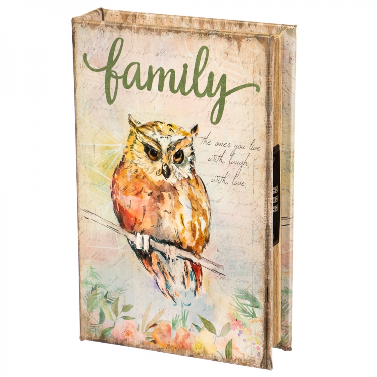 Фото - Книги сейф с кодовым замком Owl 26 см купить в киеве на подарок, цена, отзывы