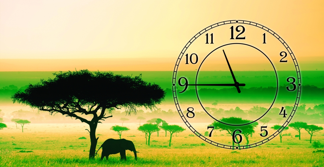 Фото - Часы на холсте Колизей 25х50 купить в киеве на подарок, цена, отзывы