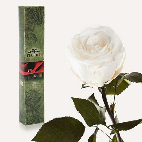 Фото - Долгосвежая роза Белый Бриллиант в подарочной упаковке (не вянут от 6 месяцев до 5 лет) купить в киеве на подарок, цена, отзывы