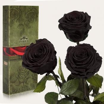 Фото - Три долгосвежих розы Черный Бриллиант в подарочной упаковке (не вянут от 6 месяцев до 5 лет) купить в киеве на подарок, цена, отзывы