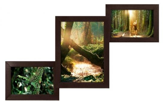 Фото - Мультирамка Лесенка Венге на 3 фото купить в киеве на подарок, цена, отзывы
