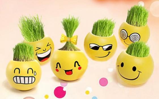 Фото - Вырастайка керамический горшочек -  С СЕМЕНАМИ SMILE купить в киеве на подарок, цена, отзывы