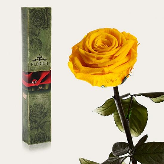 Фото - Долгосвежая роза Золотистый Хризоберилл в подарочной упаковке (не вянут  до 5 лет) купить в киеве на подарок, цена, отзывы