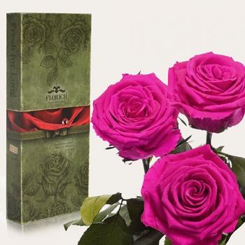 Фото - Три долгосвежих розы Малиновый Родолит в подарочной упаковке (не вянут от 6 месяцев до 5 лет) купить в киеве на подарок, цена, отзывы