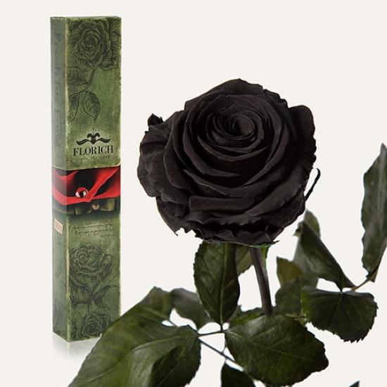 Фото - Долгосвежая роза Черный Бриллиант в подарочной упаковке (не вянут от 6 месяцев до 5 лет) купить в киеве на подарок, цена, отзывы