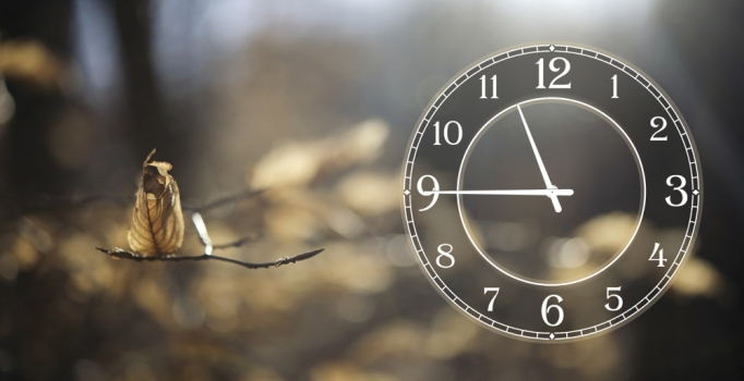 Фото - Часы на холсте Осень 25х50 купить в киеве на подарок, цена, отзывы