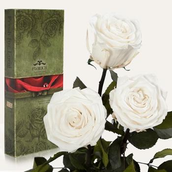 Фото - Три долгосвежих розы Белый Бриллиант в подарочной упаковке (не вянут от 6 месяцев до 5 лет) купить в киеве на подарок, цена, отзывы