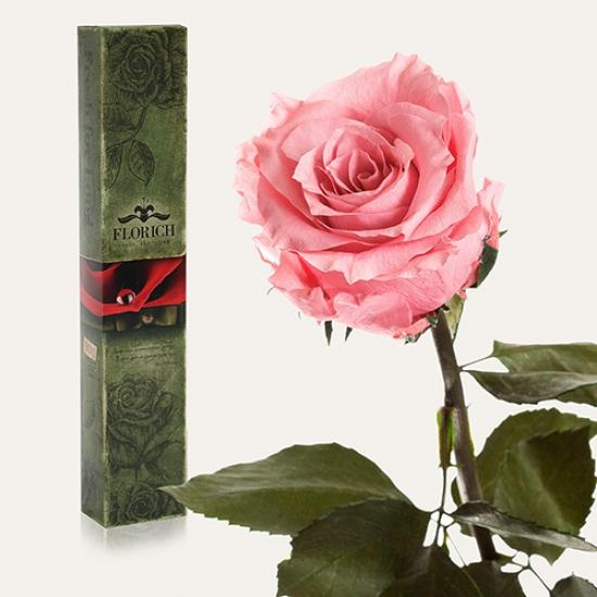 Фото - Долгосвежая роза Розовый Кварц в подарочной упаковке (не вянут от 6 месяцев до 5 лет) купить в киеве на подарок, цена, отзывы