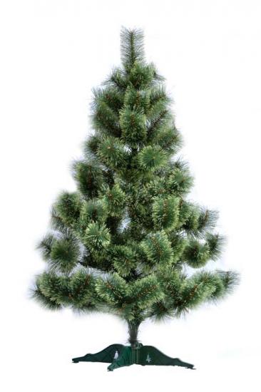 Фото - Сосна распушенная высотой 1.70 метра купить в киеве на подарок, цена, отзывы