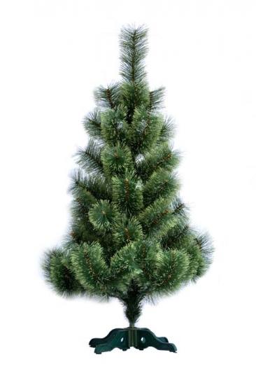 Фото - Сосна распушенная высотой 1.30 метра купить в киеве на подарок, цена, отзывы
