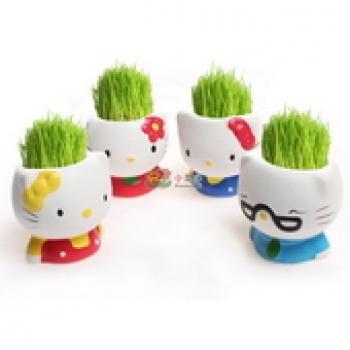 Фото - Травянчик Hello Kitty купить в киеве на подарок, цена, отзывы