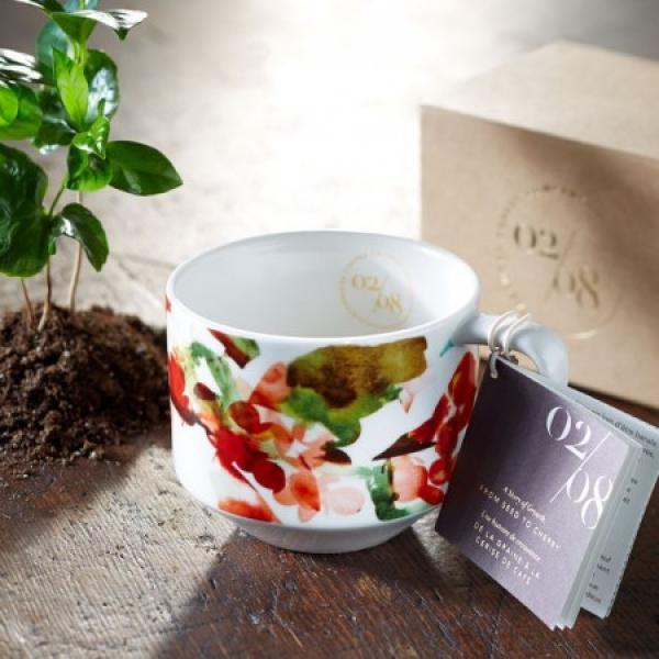 Фото - Фарфоровая чашка Starbucks Кисти 02 купить в киеве на подарок, цена, отзывы