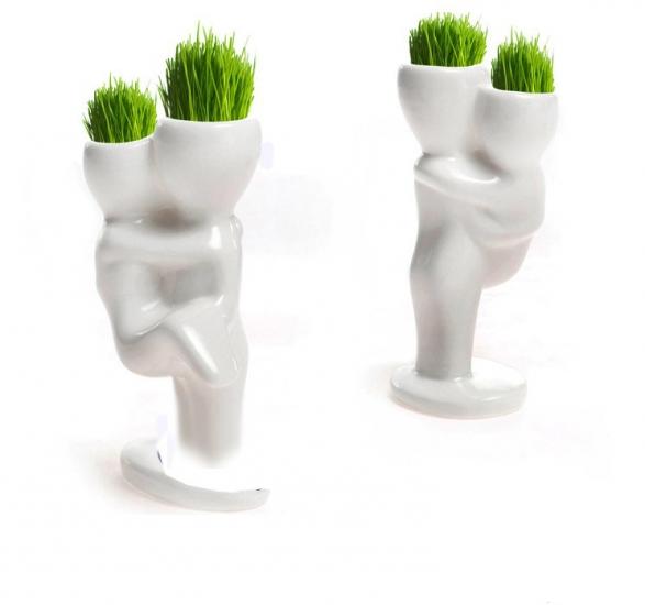 Фото - Керамический горшочек настольный с семенами1 купить в киеве на подарок, цена, отзывы