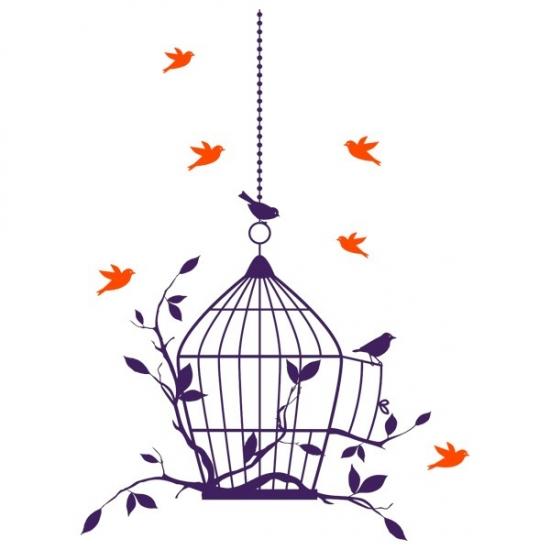 Фото - Наклейка Интерьерная Birdcage купить в киеве на подарок, цена, отзывы