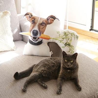 Фото - Подушка Пёс с морковкой купить в киеве на подарок, цена, отзывы