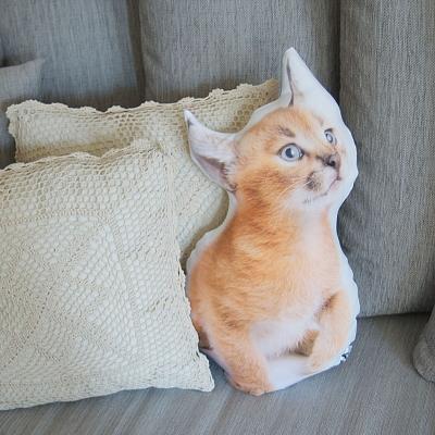 Фото - Подушка Рысь купить в киеве на подарок, цена, отзывы
