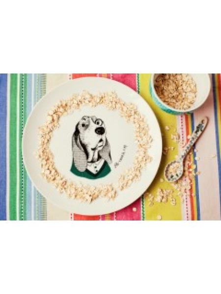 Фото - Тарелка Собака-дворецкий купить в киеве на подарок, цена, отзывы