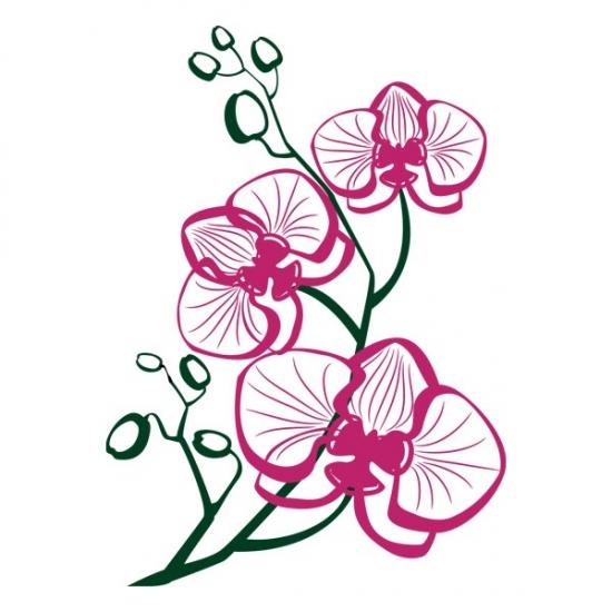 Фото - Виниловая Наклейка Orchid купить в киеве на подарок, цена, отзывы