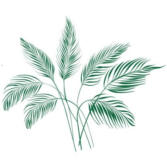 Фото - Виниловая Наклейка Palm Leaves купить в киеве на подарок, цена, отзывы