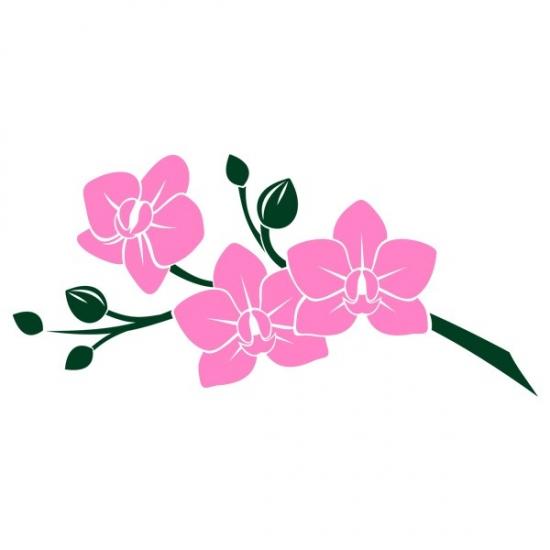 Фото - Виниловая Наклейка Pink Orchid купить в киеве на подарок, цена, отзывы