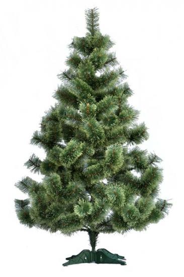 Фото - Сосна распушенная высотой 2.0 метра купить в киеве на подарок, цена, отзывы