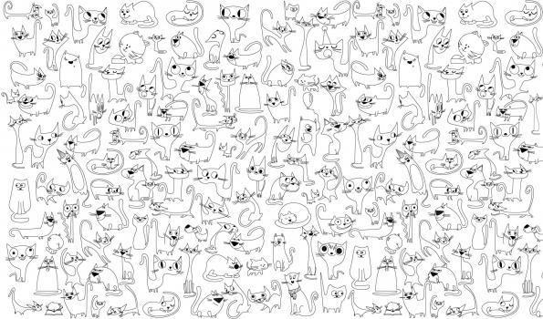 Фото - Обои раскраска - Веселые котята 1.0х0.6м купить в киеве на подарок, цена, отзывы