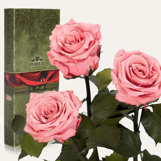 Фото - Три долгосвежих розы Розовый Кварц в подарочной упаковке (не вянут от 6 месяцев до 5 лет) купить в киеве на подарок, цена, отзывы