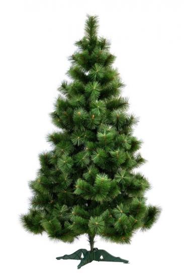 Фото - Сосна Микс высотой 1.80 м купить в киеве на подарок, цена, отзывы