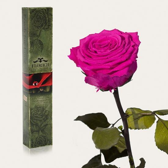 Фото - Долгосвежая роза Малиновый Родолит в подарочной упаковке (не вянут от 6 месяцев до 5 лет) купить в киеве на подарок, цена, отзывы