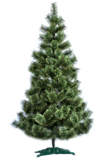Фото - Сосна распушенная высотой 2.30 метра купить в киеве на подарок, цена, отзывы