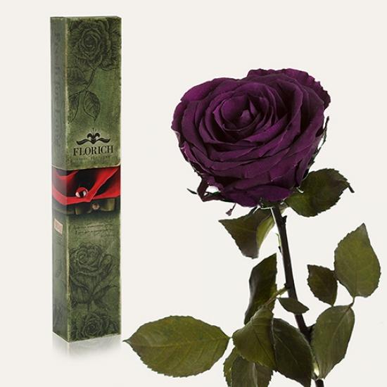 Фото - Долгосвежая роза Фиолетовый Аметист в подарочной упаковке (не вянут от 6 месяцев до 5 лет) купить в киеве на подарок, цена, отзывы