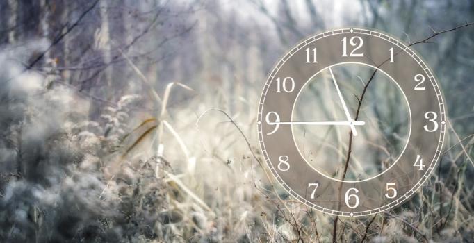 Фото - Часы на холсте То, что мы не замечаем 25х50 купить в киеве на подарок, цена, отзывы