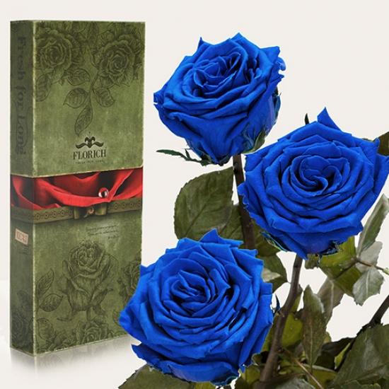 Фото - Три долгосвежих розы Синий Сапфир в подарочной упаковке (не вянут от 6 месяцев до 5 лет) купить в киеве на подарок, цена, отзывы