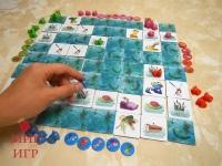 фото 5614  Настольная игра ква ква цена, отзывы