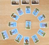 фото 4921  Настольная игра Фотосафари цена, отзывы