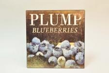 купить Декоративный Панно металл Blueberries  цена, отзывы
