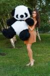 купить Медведь Панда 150 см цена, отзывы